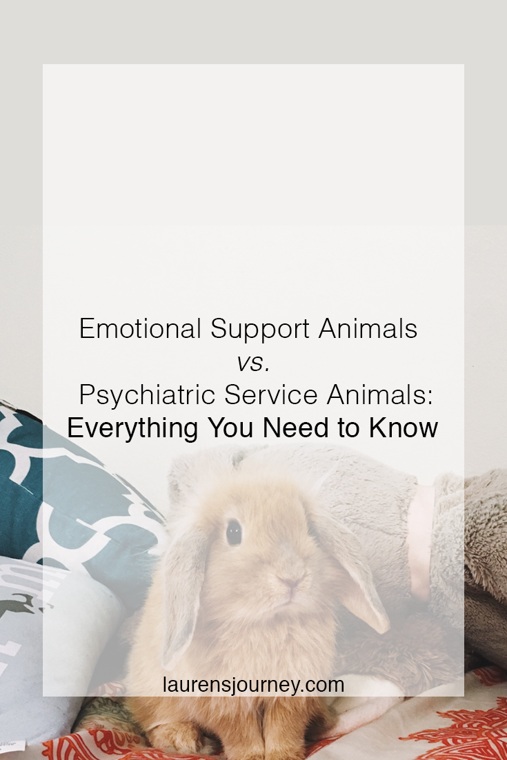 The Difference Between Emotional Support Animals and Psychiatric Service Animals // http://laurensjourney.com